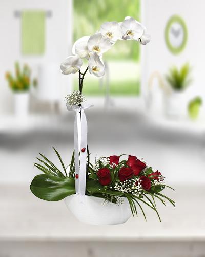 Orkide ve Kırmızı Gül Aranjman